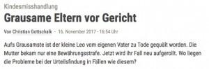 Stuttgarter Zeitung_2017